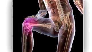 ГИРУДОТЕРАПИЯ: При заболеваниях ног, пиявка.