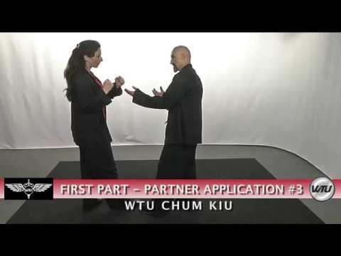 WTU Chum Kiu Form & Applications - Wing Tsun Universe
