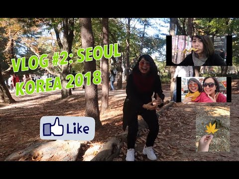 vlog-#02:-south-korea-2018-|-rachel-neri