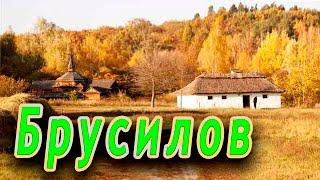 Смотреть видео Брусилов Житомирская Область