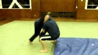 2010年11月7日 プロレス練習会「フィッシャーマンズスープレックス」
