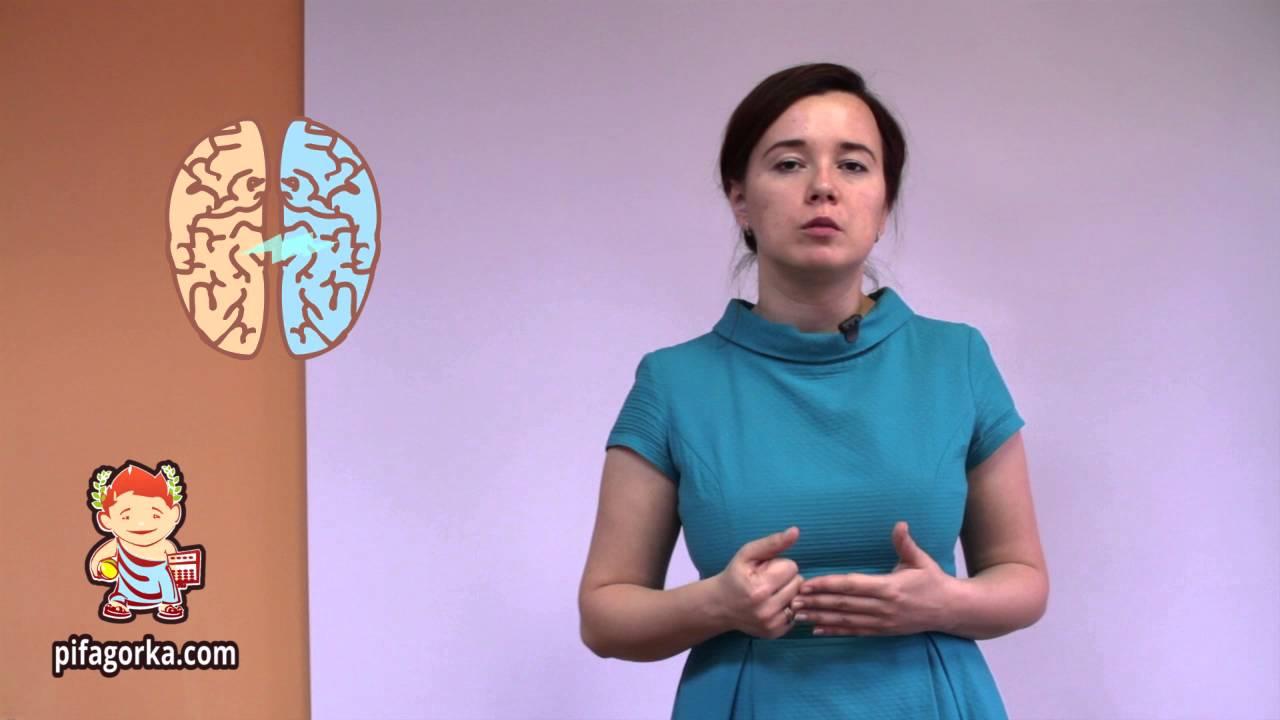 Интервью спреподавателем ментальной арифметики Лидией Александровой
