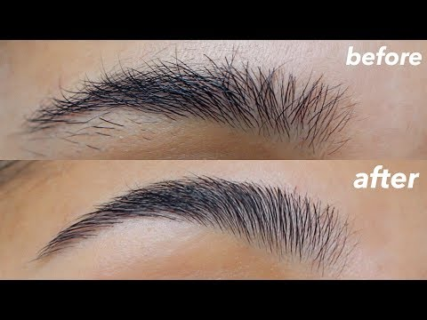 HOW TO GROOM + SHAPE YOUR EYEBROWS! (super easy)
