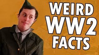 Interesting Facts You Might Not Know About WW2