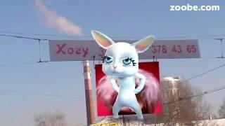 Зайка ZOOBE 'Замуж хочу!'