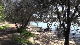 Down by the river. Roy Buchannan
