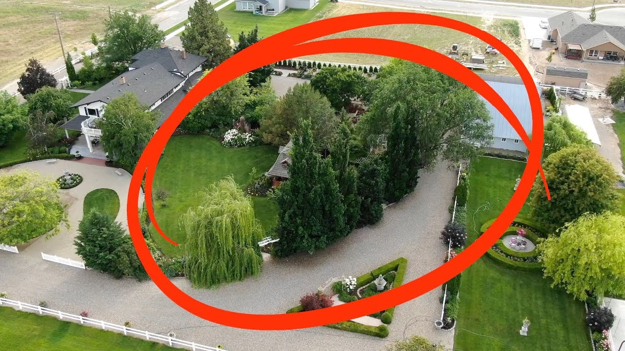 We Removed The Oak Trees Garden Answer Youtube