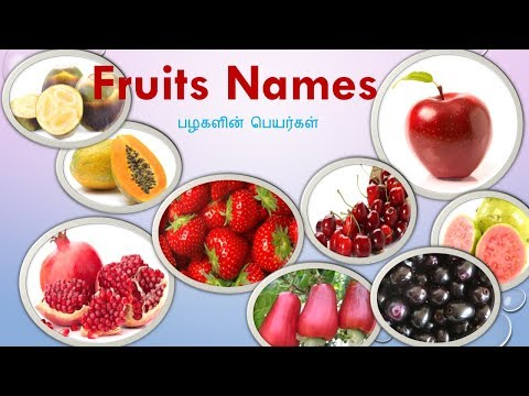 Learn 35 Fruits Name In Tamil And English With Pictures