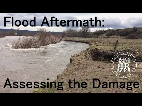 Weiser River Flooding 2019 - Midvale, ID Aftermath