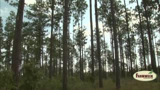 Small Mississippi logging crew earns big respect. Farmweek, March 28, 2014