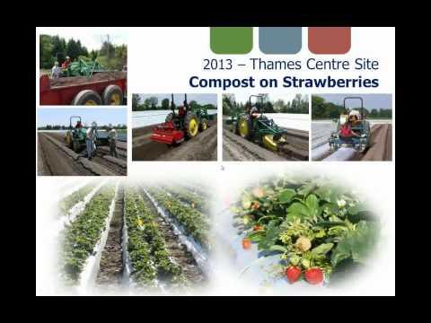 Cities Feed Farm Soils: Greenbin-Derived Compost Agricultural Trials
