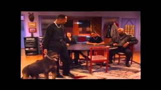 Martin Famous Dog Scene (Best Quality) thumbnail