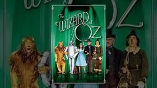 Wizard Adult costume oz