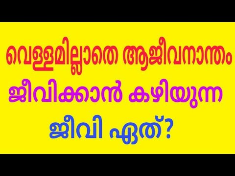 Interesting GK || Malayalam GK || Question and answers ...
