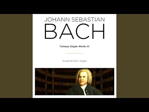 Brandenburg Concerto No. 3 in G Major, BWV 1048: I. Allegro & II. Adagio (Arr. for Organ)