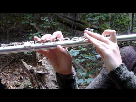 Taylor Swift  Safe and Sound Flute and Violin