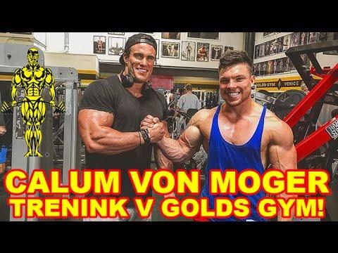 Trénink rukou a Calum von Moger v Golds Gym Venice. Photoshoot. Den v Životě 19