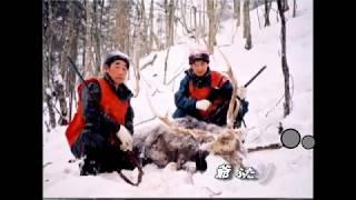爺ふたりマタギはエゾシカ撃ちに北海道へ。 Deer hunting in Hokkaido.