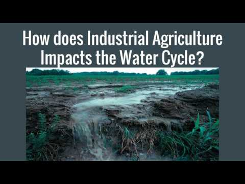 Industrial Agriculture Final Video