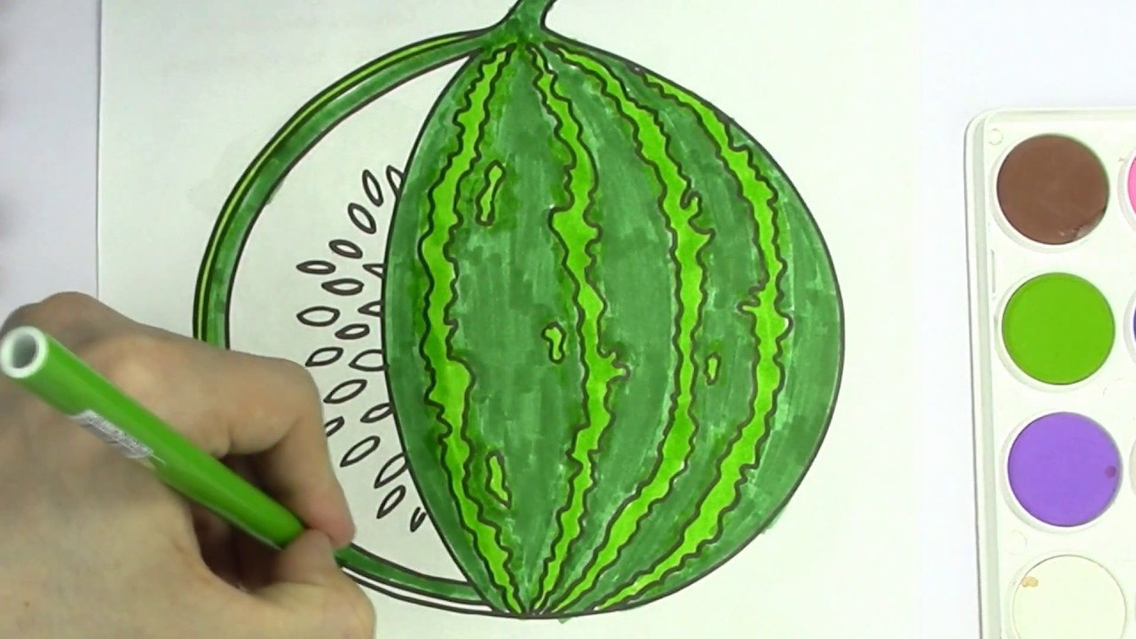 How to Draw Watermelon Coloring Pages Fruit   Kids Learn Drawing and ...