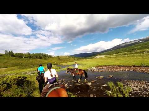 Horseback riding in the Norwegian mountains - Tuesday part2