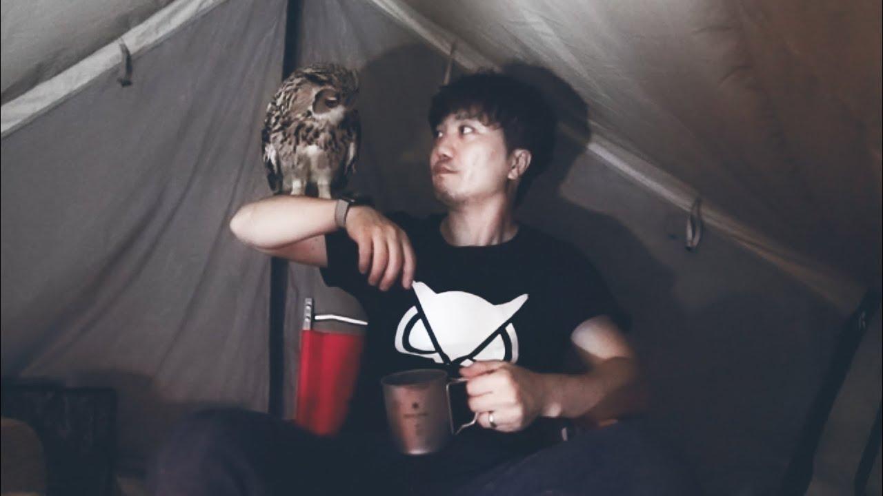 キャンプ初心者がペットのフクロウと初めてのソロキャンプに行ってきた