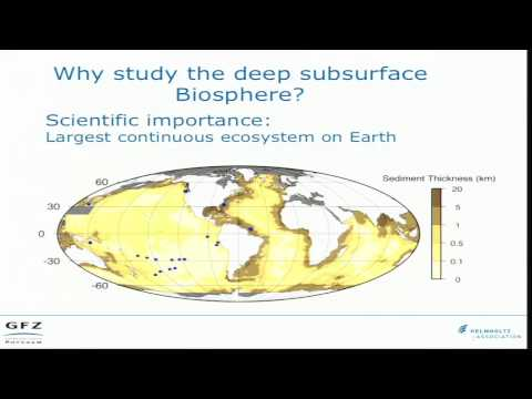 Life in the Subsurface  the Geomicrobiology of the Deep Biosphere  (Jens Kallmeyer)