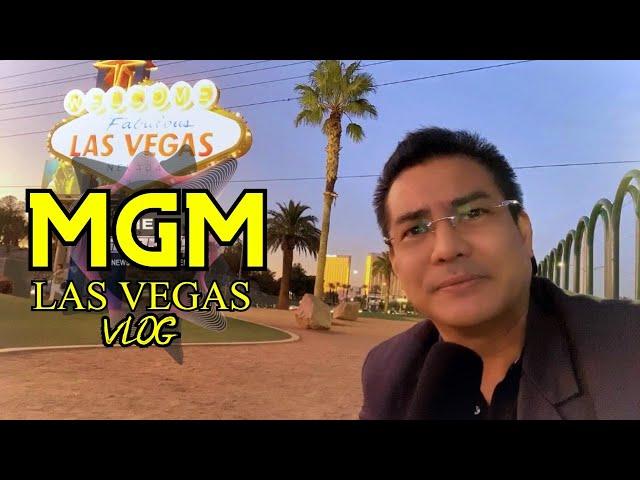 MY MGM EXPERIENCE! [WILDER-ORTIZ 2]