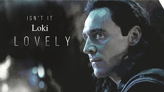 Loki | Lovely