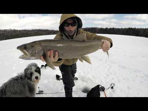 WISCONSIN LAKE TROUT THROUGH THE ICE