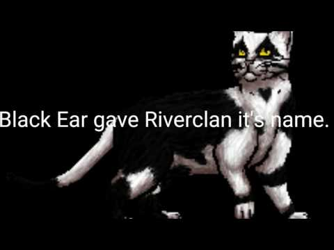 Facts and Mistakes About Riverclan! | Warrior Cats