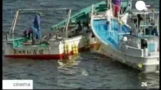 Охота на дельфинов