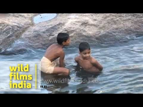 Boys dip into the waters of the river at Thiruvalluvar Temple thumbnail