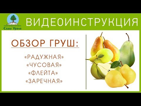 Квартиры посуточно в Екатеринбурге, снять на сутки, на