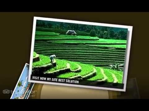 Bali  Property  One + 2012 Best Ever- YouTube.flv