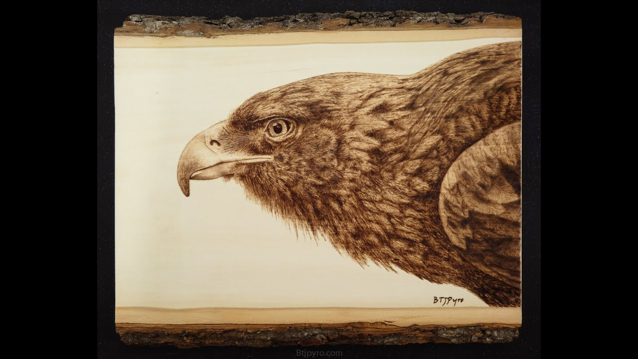 Golden Eagle - Woodburning ~ (205x speed) - YouTube