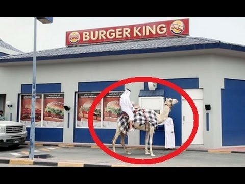 Man Rides Camel Through Burger King Drive Thru