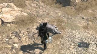 MGSV Donkeys can fly