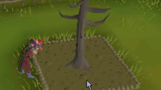 Single Player RuneScape - Vol 01