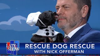 Rescue Dog Rescue with Nick Offerman, Halloween Costume Edition