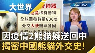 因疫情養不起...英國愛丁堡動物園考慮將2熊貓送回中國 揭密中國熊貓外交史! |主播王志郁|【大世界新聞】20210106|三立iNEWS