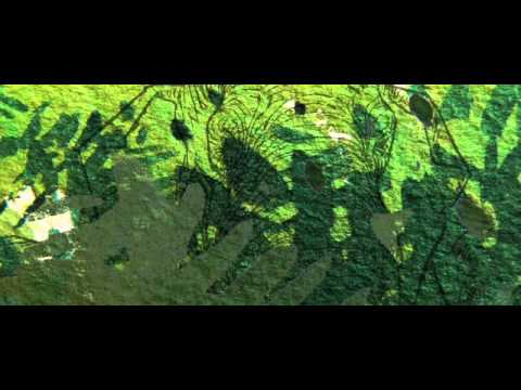 François BOUCQ/Charles KOECHLIN : 5/8 Le Livre De La Jungle (2006)
