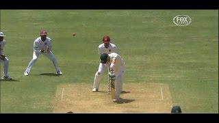 Ball of the century : west indies leg spinner blows brad haddin away - amazing delievery