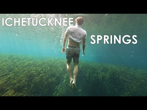 Camping at Ichetucknee Springs Florida and Diving at Blue Hole (Tons of Fish in Clear Water)