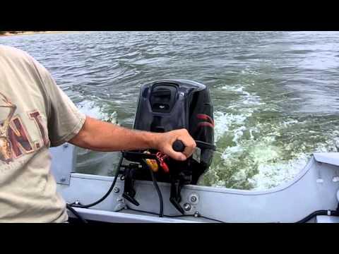 Project Outboards of Dalton City, Il  MAPI 25 HP Four Stroke Motor