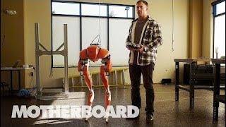 The Two-Legged Robots Walking Into ᴛhe Future