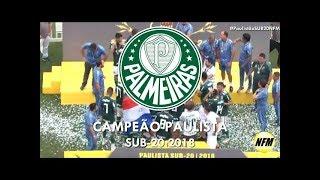 PALMEIRAS CAMPEÃO PAULISTA SUB-20 ~ Palmeiras 4x2 Corinthians ~ 18/11/2018