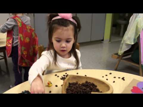 Brickton Montessori School Fierce Frogs Music Video