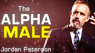 HOW TO BE AN ALPHA MALE | Jordan Peterson  | LIFE ADVICE