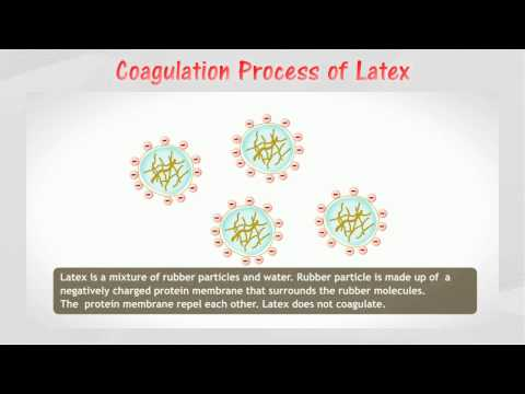 Coagulation of rubber